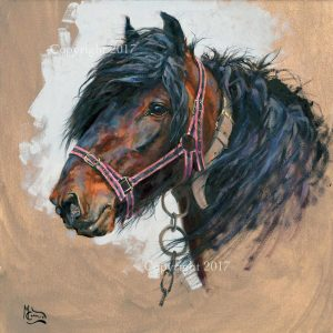 The Gypsy Cob