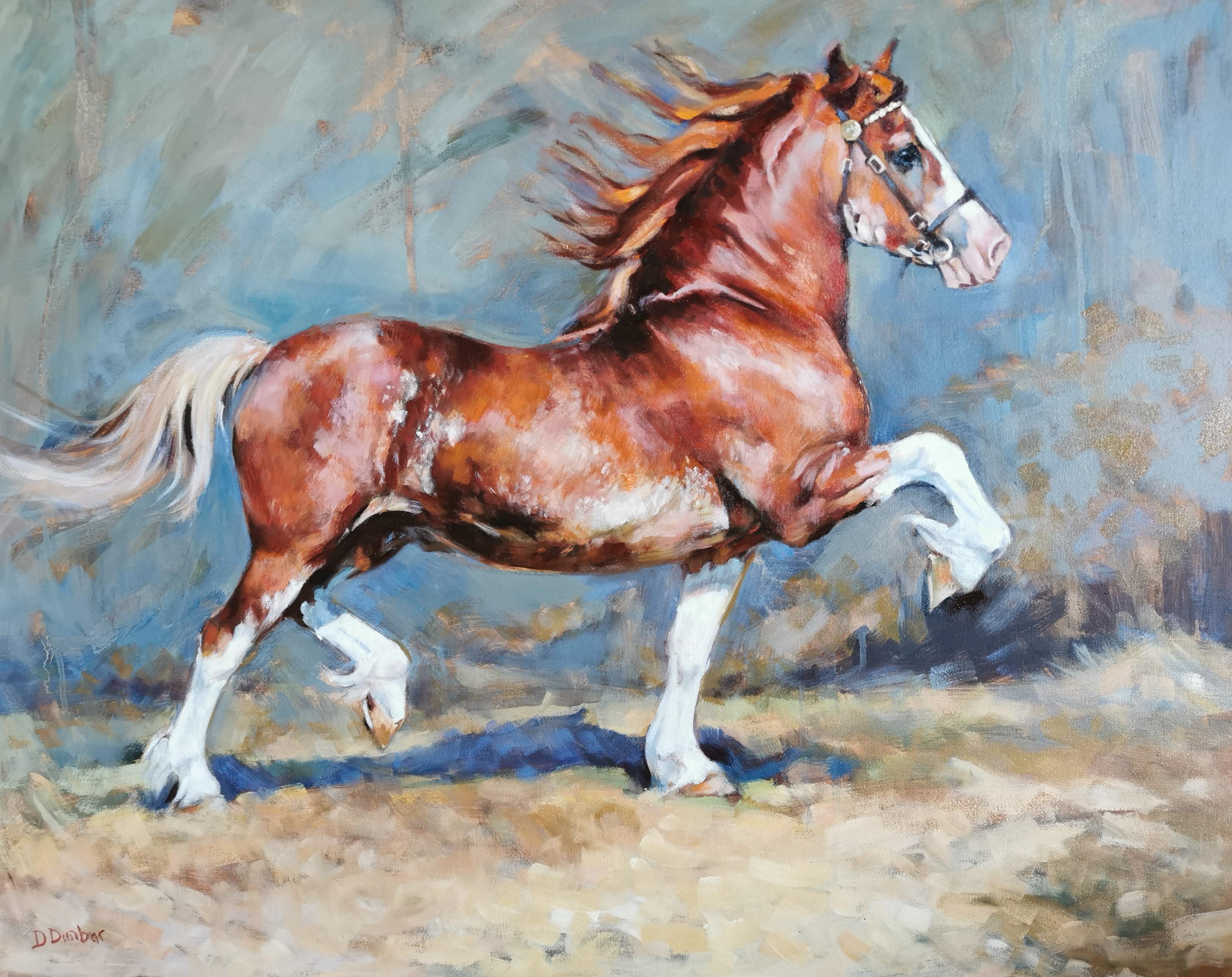 cob stallion trotting Dunbar