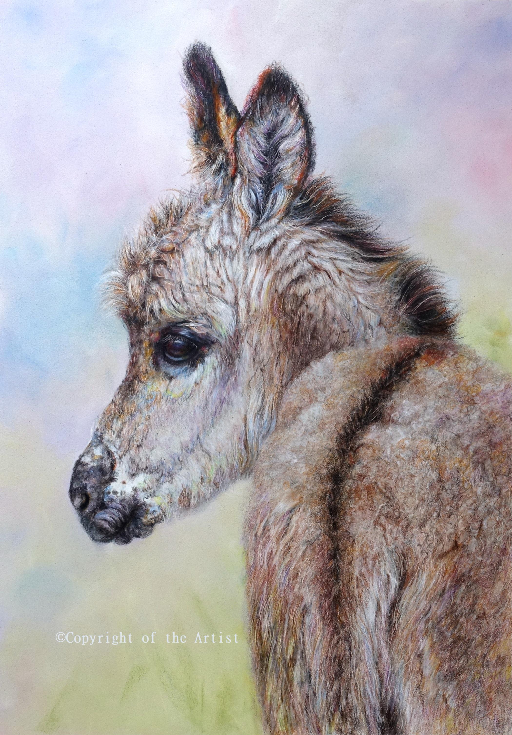 pastel of a donkey foal