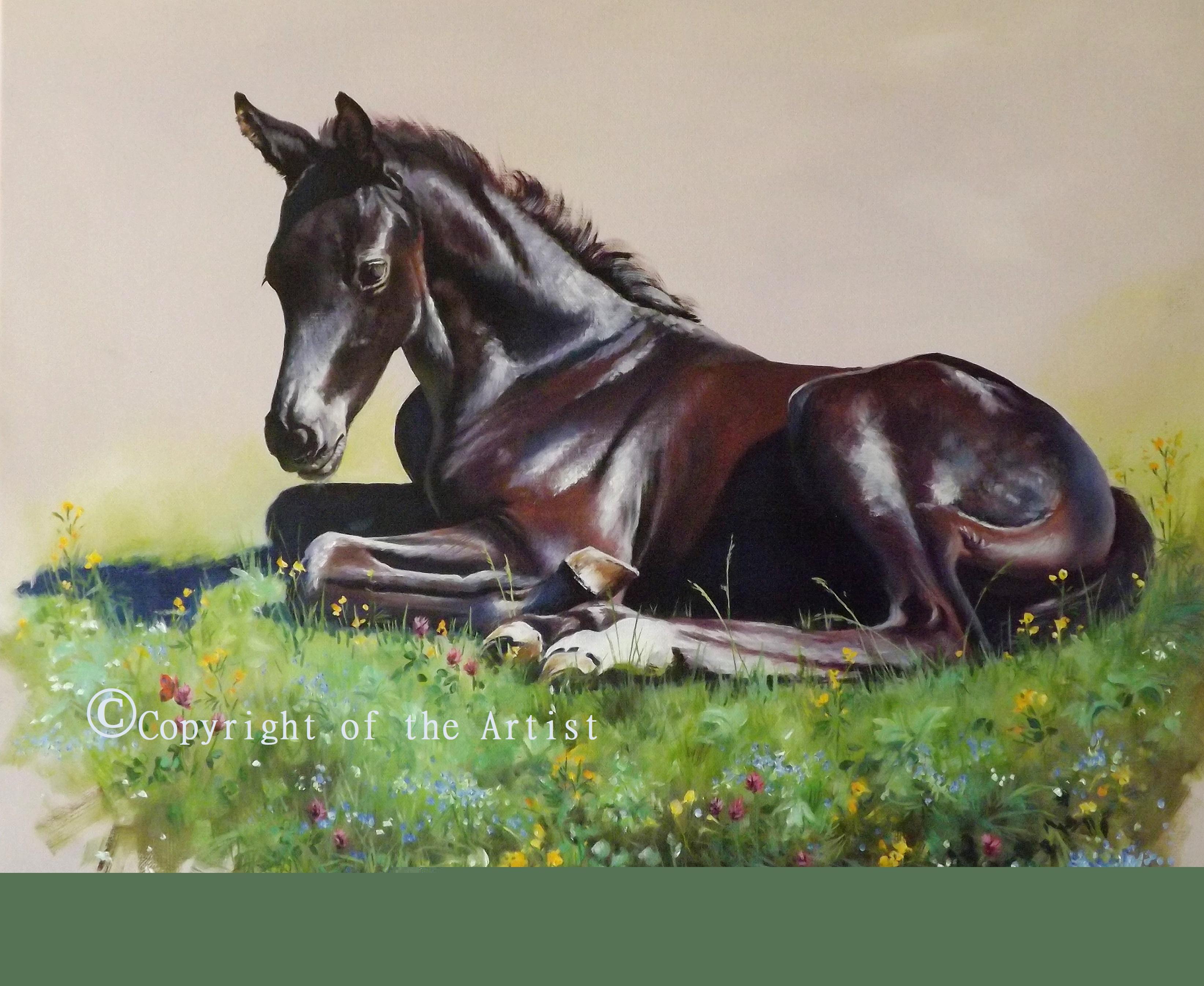 Jo Van Kampen foal painting