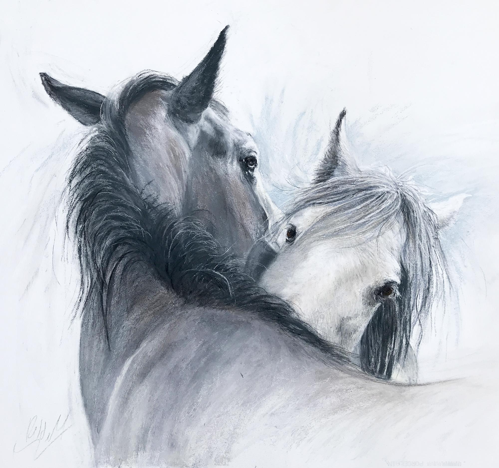 Horses grooming de Mendonca